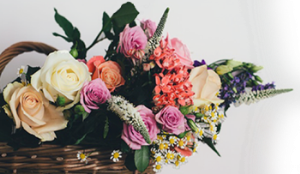 Комсомольск на амуре заказать цветы купить цветы в могилеве недорого